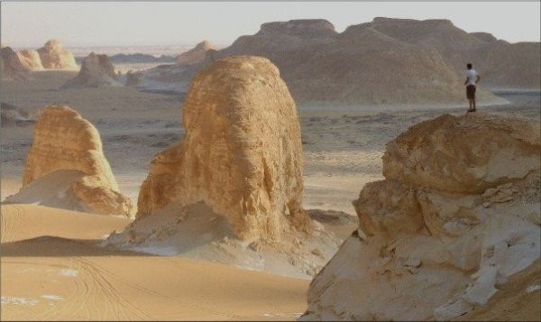 Desert Camel safari trip 10 days -9 nights