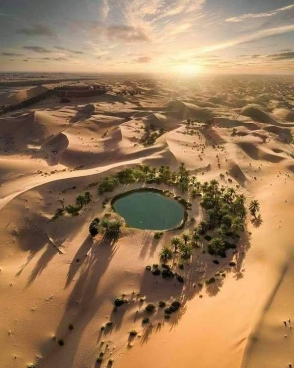 Egypt Safari Tours Baharyia Oasis 4 days / 3Nights